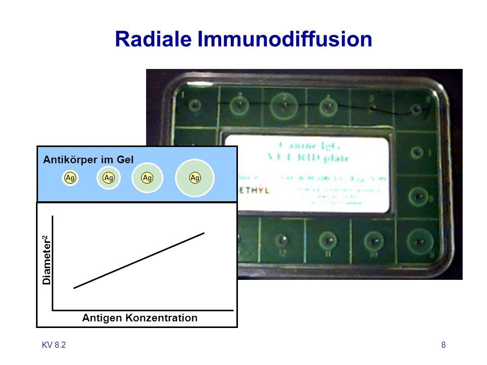 KV 8.28 Radiale Immunodiffusion Antigen Konzentration Diameter 2 Ag Antikörper im Gel