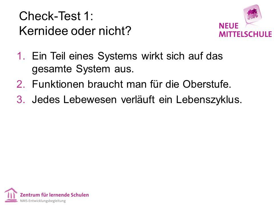 Check-Test 1: Kernidee oder nicht? 1.Ein Teil eines Systems wirkt sich auf das gesamte System aus. 2.Funktionen braucht man für die Oberstufe. 3.Jedes