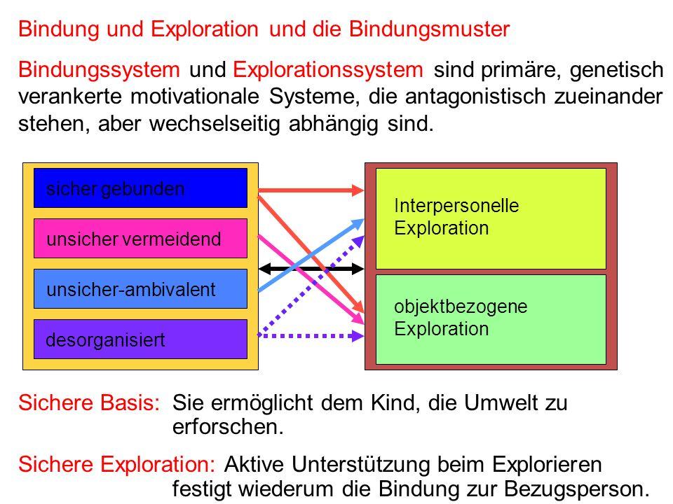 Bindung und Exploration und die Bindungsmuster Bindungssystem und Explorationssystem sind primäre, genetisch verankerte motivationale Systeme, die ant