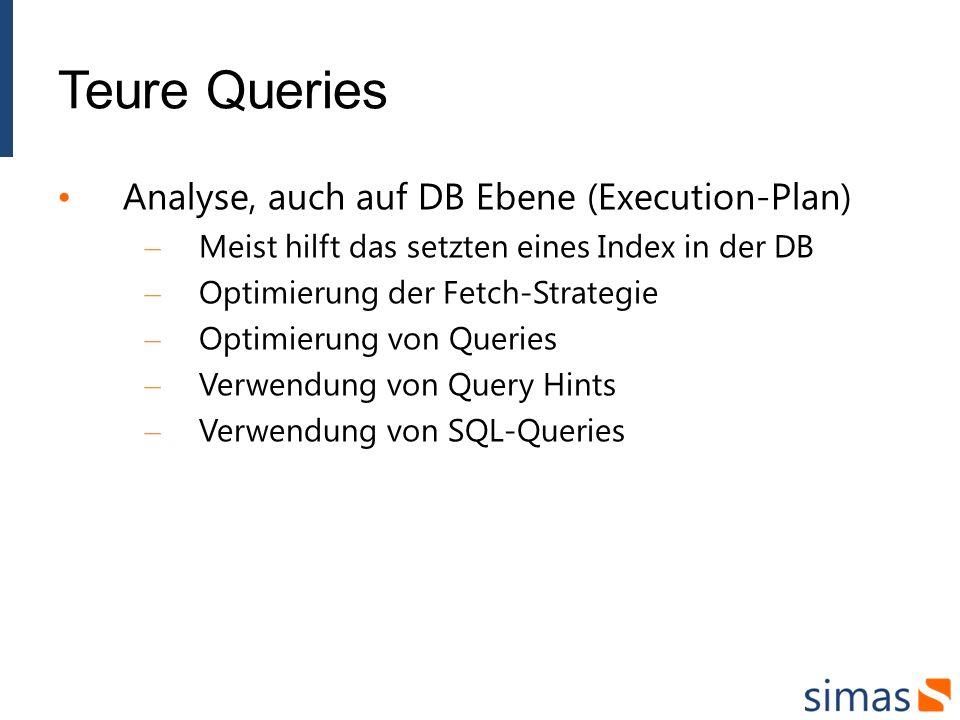 Teure Queries Analyse, auch auf DB Ebene (Execution-Plan) – Meist hilft das setzten eines Index in der DB – Optimierung der Fetch-Strategie – Optimierung von Queries – Verwendung von Query Hints – Verwendung von SQL-Queries