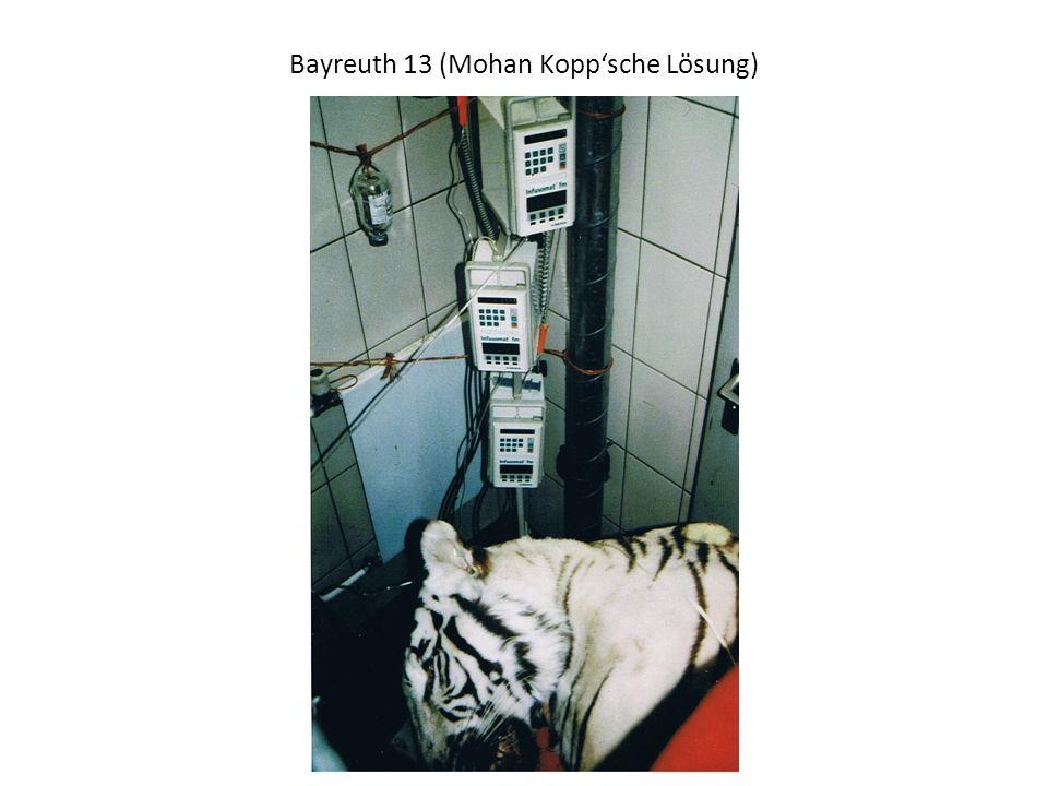 Bayreuth 13 (Mohan Koppsche Lösung)