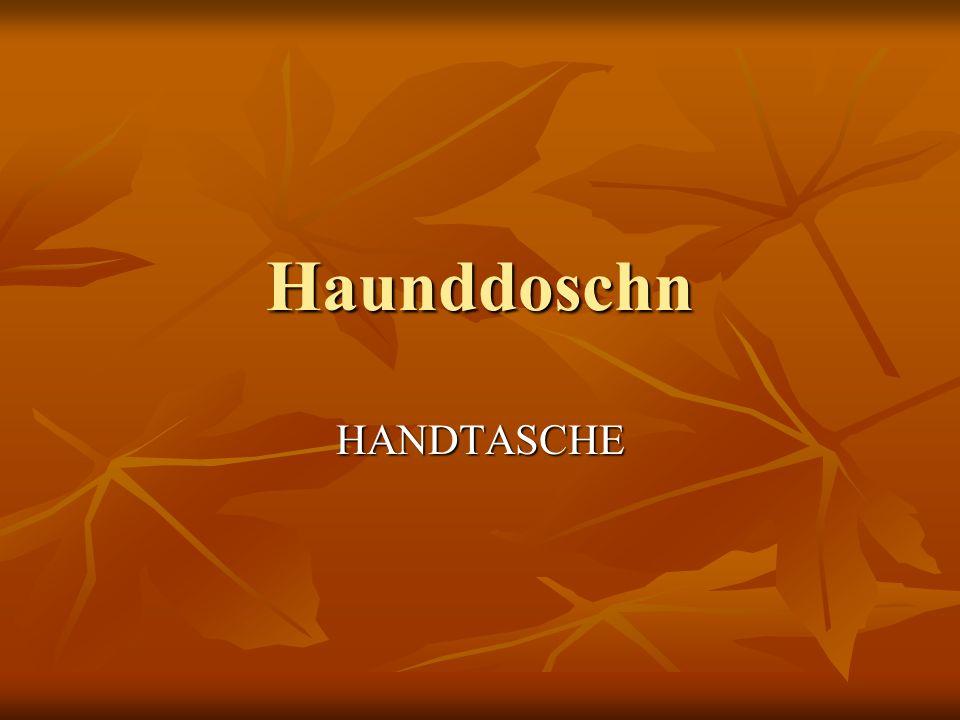 Haunddoschn HANDTASCHE