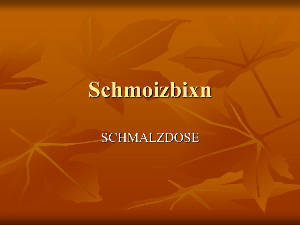 Schmoizbixn SCHMALZDOSE