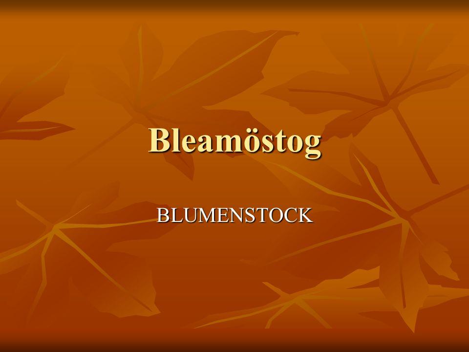 Bleamöstog BLUMENSTOCK