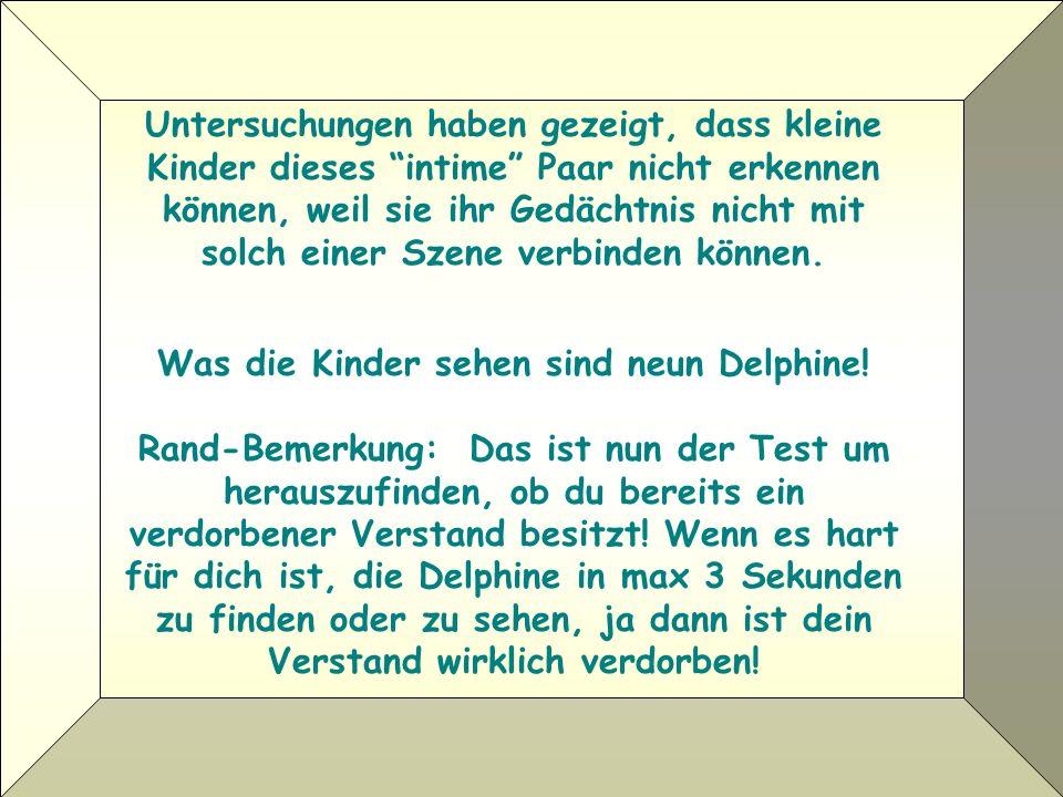 Was die Kinder sehen sind neun Delphine.