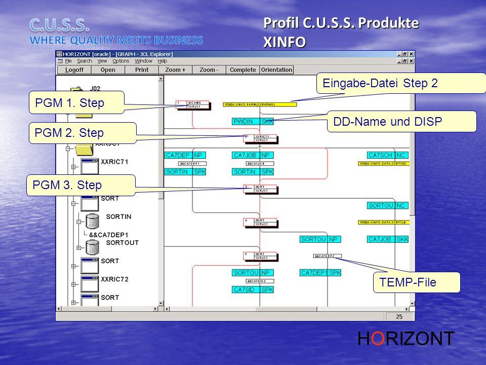 PGM 1. Step PGM 2. Step PGM 3. Step Eingabe-Datei Step 2 DD-Name und DISP TEMP-File Profil C.U.S.S. Produkte XINFO