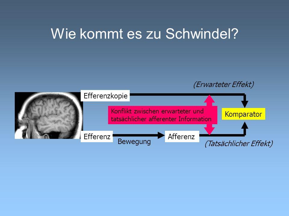 Wie kommt es zu Schwindel? Bewegung EfferenzAfferenz Komparator (Erwarteter Effekt) (Tatsächlicher Effekt) Efferenzkopie Konflikt zwischen erwarteter