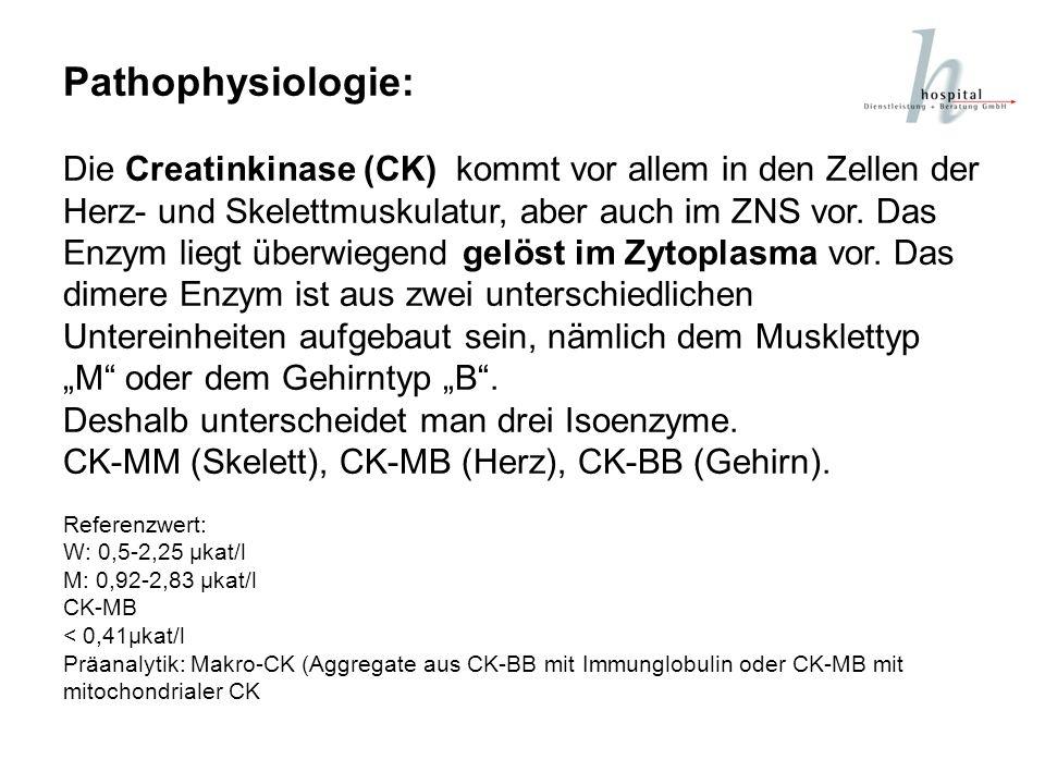 Pathophysiologie: Die Creatinkinase (CK) kommt vor allem in den Zellen der Herz- und Skelettmuskulatur, aber auch im ZNS vor. Das Enzym liegt überwieg