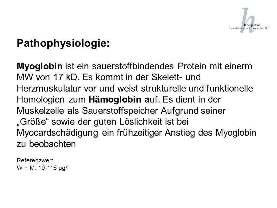 Pathophysiologie: Das Protein Troponin (Referenzbereich: < 1 ng/ml) bindet Calcium, wodurch die Kontraktion des Herzmuskels eingeleitet wird.