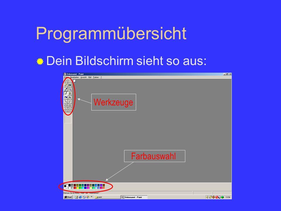 Programmübersicht Dein Bildschirm sieht so aus: Werkzeuge Farbauswahl