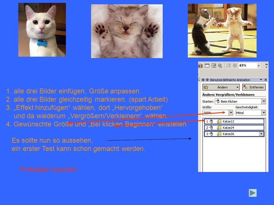 1. alle drei Bilder einfügen, Größe anpassen. 2. alle drei Bilder gleichzeitig markieren. (spart Arbeit) 3. Effekt hinzufügen wählen, dort Hervorgehob