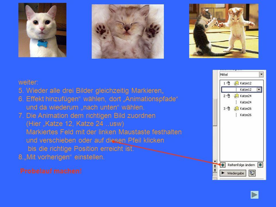 weiter: 5. Wieder alle drei Bilder gleichzeitig Markieren 6. Effekt hinzufügen wählen, dort Animationspfade und da wiederum nach unten wählen. 7. Die