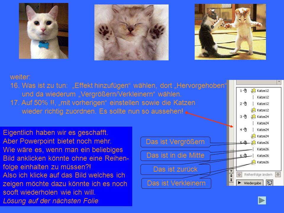weiter: - diese 4 Animationen markieren (Klick in das Bild) - hier klicken und Anzeigedauer wählen - auf Trigger klicken und hier Punkt setzen Katze 12 auswählen (Das ist die in der Mitte und bei Dir heißt das sicher anders) mit OK abschließen.