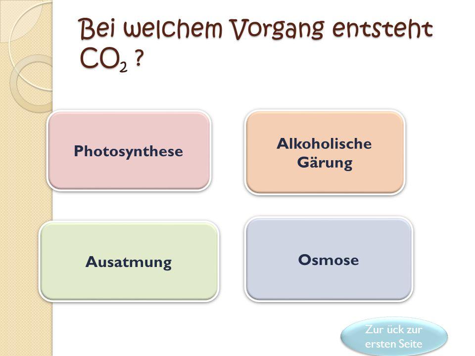 Gratuliere ! Dies ist die richtige Form der allgemeinen Darstellung der anaeroben Atmung: Organische Substanz A einfachere organische Substanz B + CO