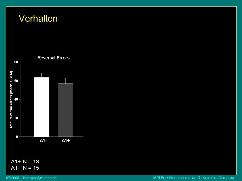 07/2008 ullsperger@nf.mpg.de MPI F OR N EUROLOGICAL R ESEARCH, C OLOGNE Verhalten * * A1+N = 13 A1-N = 15