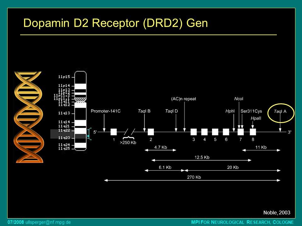 07/2008 ullsperger@nf.mpg.de MPI F OR N EUROLOGICAL R ESEARCH, C OLOGNE G A SNP in Taq IA mit funktionellem Effekt Genotyp:Prävalenz:D2-Rezeptordichte: A1A12-3% A1A227% A2A270% A1+ zeigen Reduktion der DRD2-Dichte um ca.