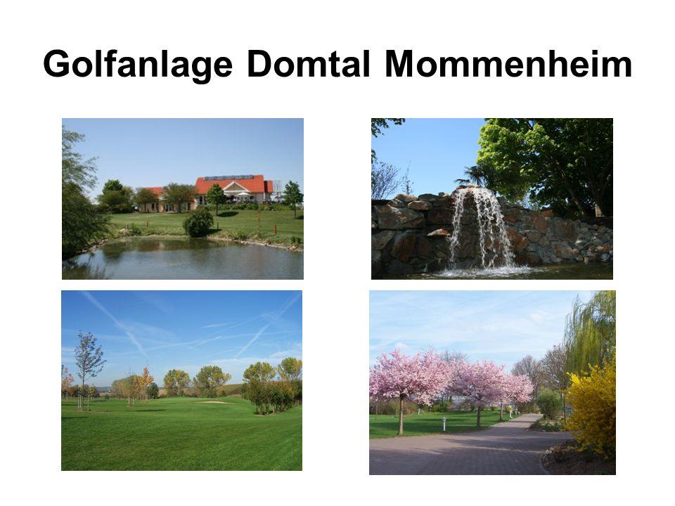 Golfanlage Domtal Mommenheim Werbemöglichkeiten/-preise 2013 Prospektauslage im Foyer des Clubhauses Zeitraum: 12 Monate jährlich 250.00 zzgl.