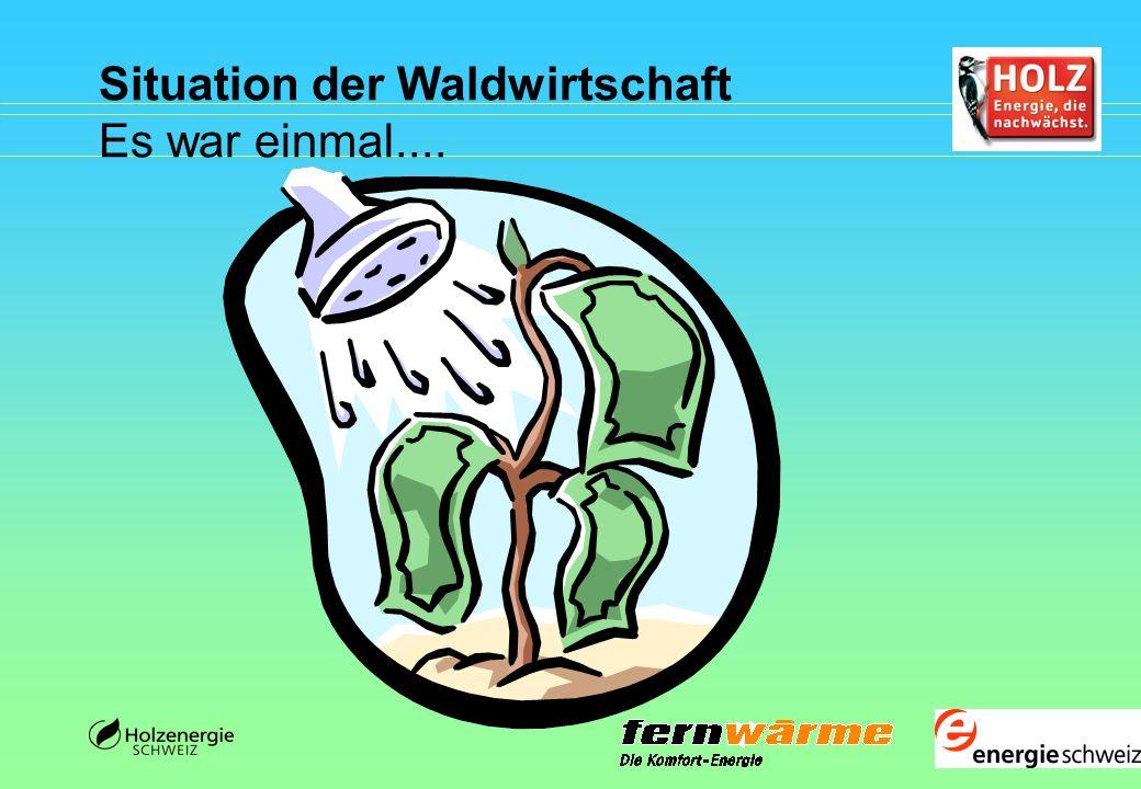 Deutschland - Bayern Beispiel Biomasseheizwerk Reit im Winkl Holzkessel 4 MW Gas- u.