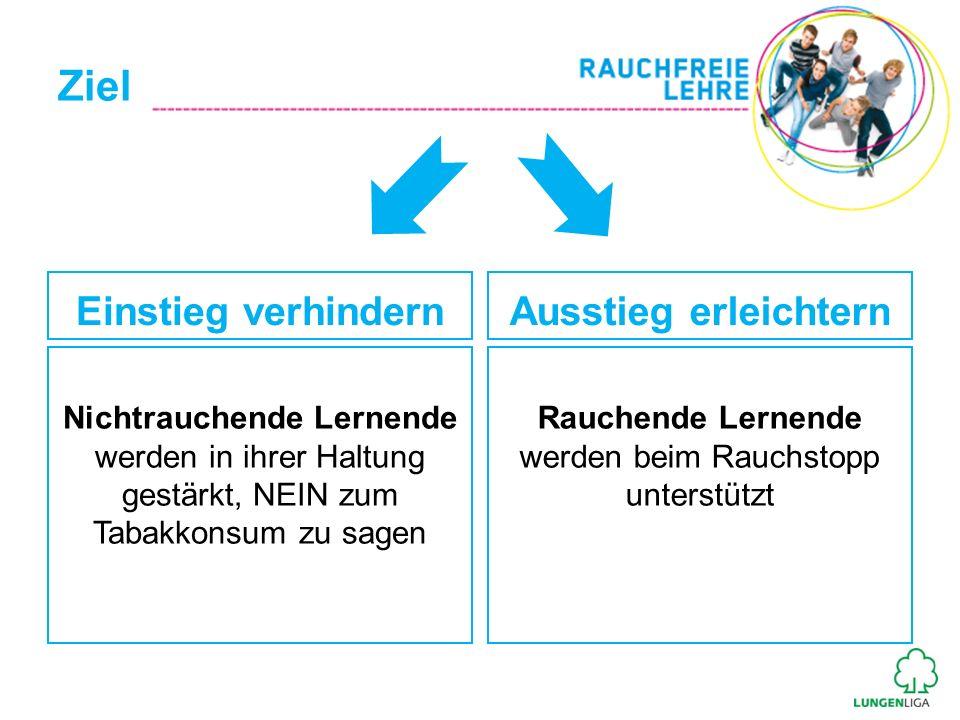 Vorteile für Ausbildungsbetrieb Wenig Aufwand Laufende Information zum Projektverlauf Gesündere und leistungsfähigere Lernende Firmennennung auf www.rauchfreielehre.ch Image als gesundheitsfördernder Ausbildungsbetrieb PR-Möglichkeit durch Sponsoring