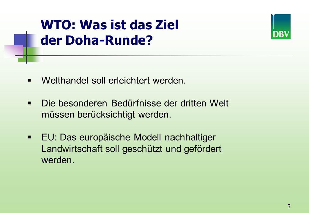 3 WTO: Was ist das Ziel der Doha-Runde.Welthandel soll erleichtert werden.