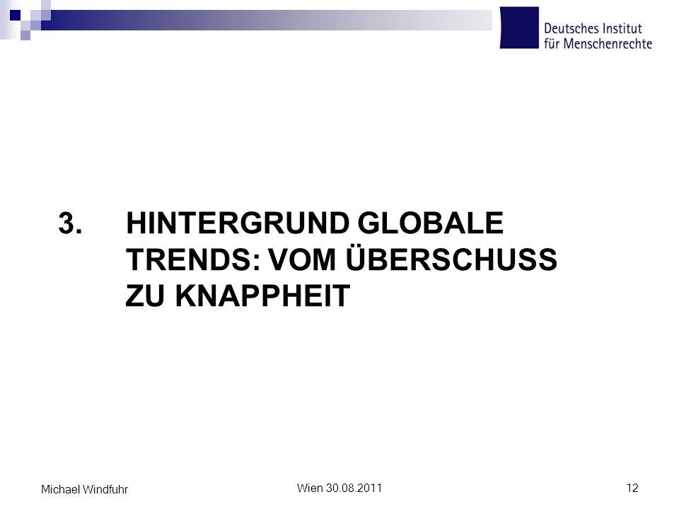 3. HINTERGRUND GLOBALE TRENDS: VOM ÜBERSCHUSS ZU KNAPPHEIT Wien 30.08.201112 Michael Windfuhr