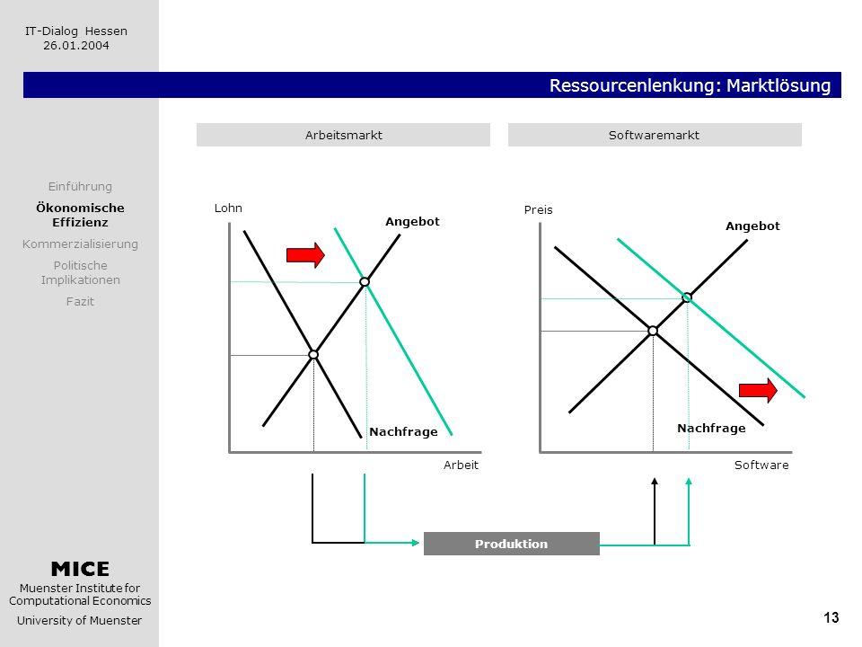 MICE Muenster Institute for Computational Economics University of Muenster IT-Dialog Hessen 26.01.2004 13 Ressourcenlenkung: Marktlösung Software Prei