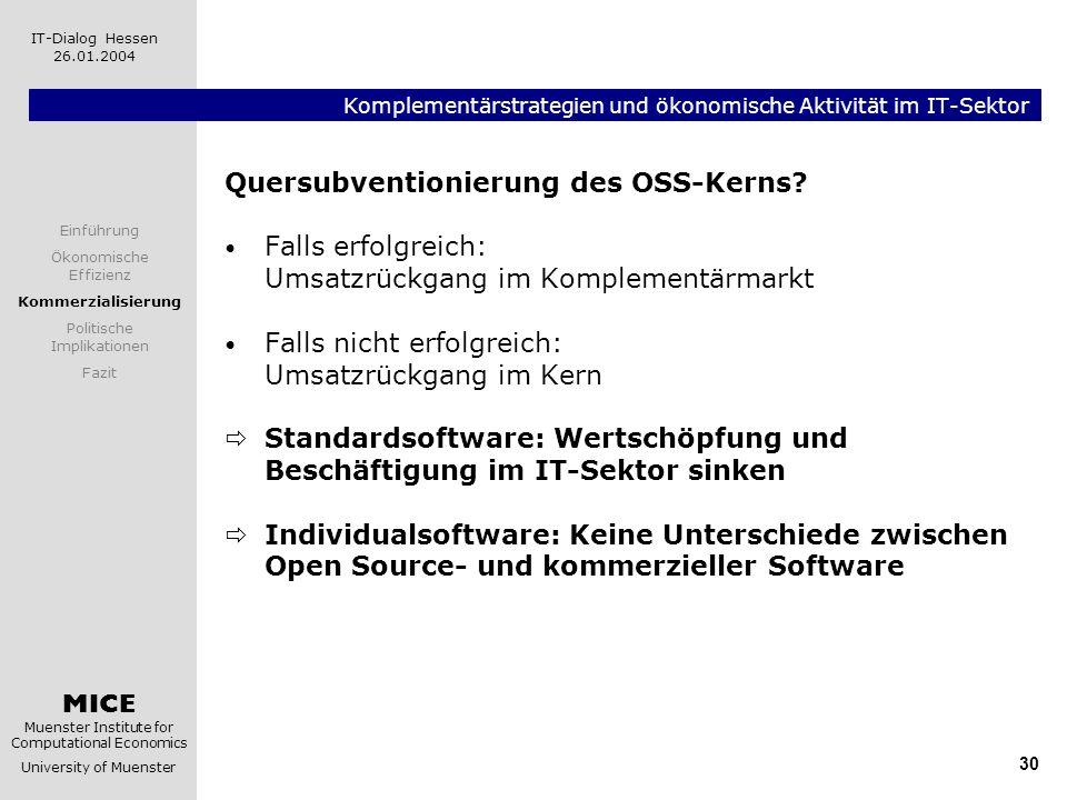 MICE Muenster Institute for Computational Economics University of Muenster IT-Dialog Hessen 26.01.2004 30 Komplementärstrategien und ökonomische Aktiv
