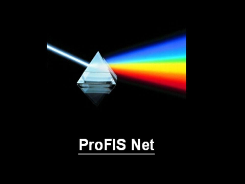 Serverdienst, der dem Endbenutzer erlaubt, über einen Browser auf die ProFIS-Daten zuzugreifen Interessant bei: langsamer Netzanbindung (Außenstellen, Home- Arbeitsplätze) langsamen Arbeitsplatzrechnern Rechnern ohne Officeinstallationen ProFIS Net – Das ProFIS-Internet-Tool –