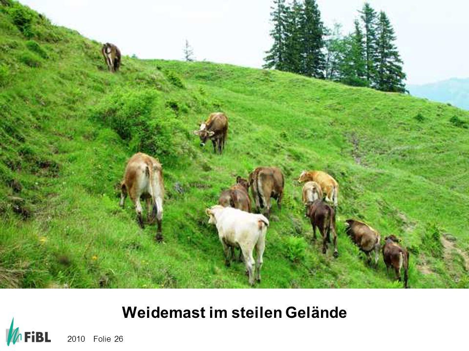 2010 Folie 26 Bild: Weidemast im steilen Gelände Weidemast im steilen Gelände