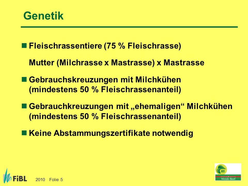 2010 Folie 5 Genetik Fleischrassentiere (75 % Fleischrasse) Mutter (Milchrasse x Mastrasse) x Mastrasse Gebrauchskreuzungen mit Milchkühen (mindestens