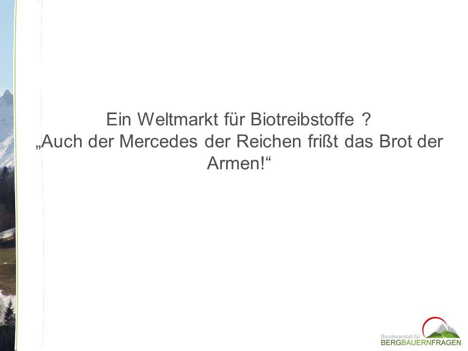 Ein Weltmarkt für Biotreibstoffe ? Auch der Mercedes der Reichen frißt das Brot der Armen!
