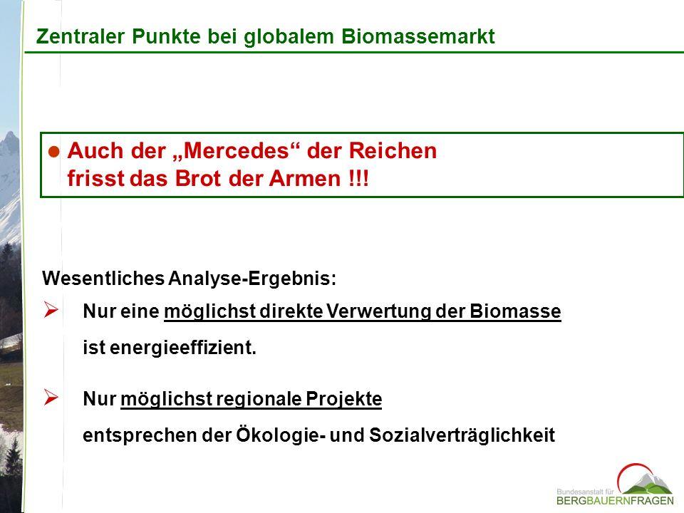 Zentraler Punkte bei globalem Biomassemarkt Wesentliches Analyse-Ergebnis: Nur eine möglichst direkte Verwertung der Biomasse ist energieeffizient. Nu