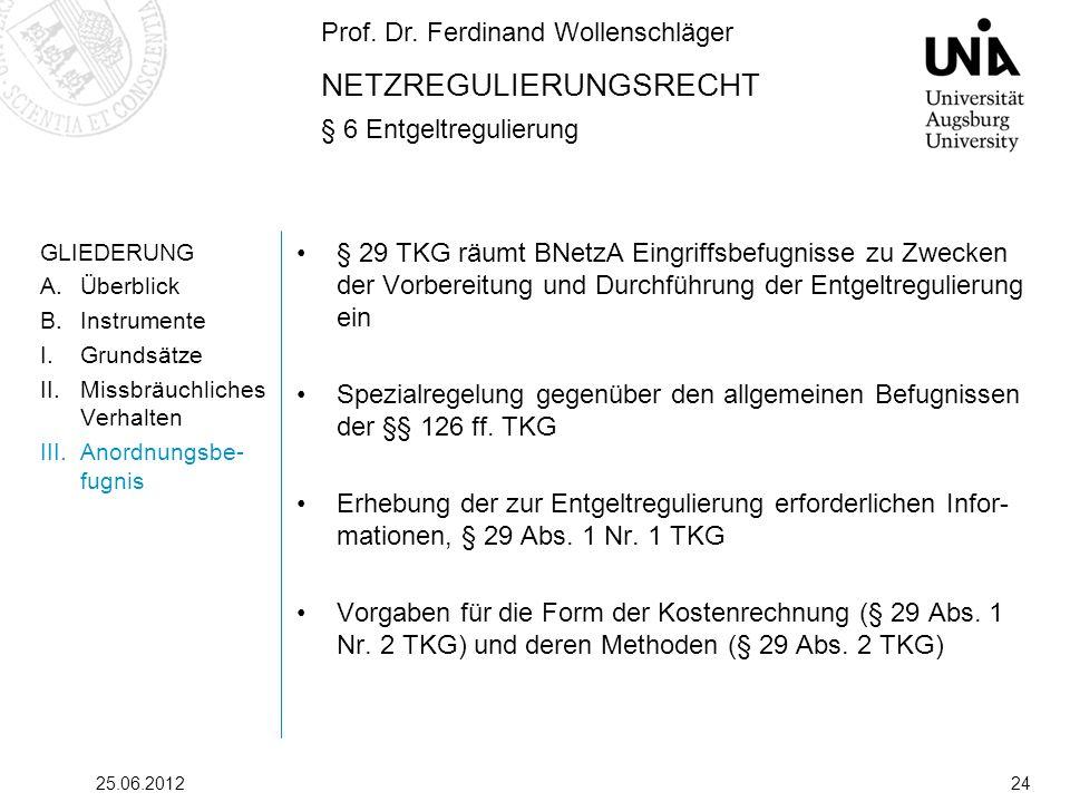 Prof. Dr. Ferdinand Wollenschläger NETZREGULIERUNGSRECHT § 6 Entgeltregulierung 25.06.201224 GLIEDERUNG A.Überblick B.Instrumente I.Grundsätze II.Miss