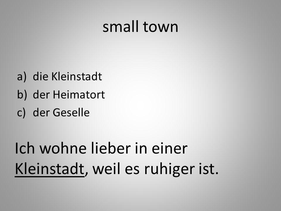 small town a)die Kleinstadt b)der Heimatort c)der Geselle Ich wohne lieber in einer Kleinstadt, weil es ruhiger ist.