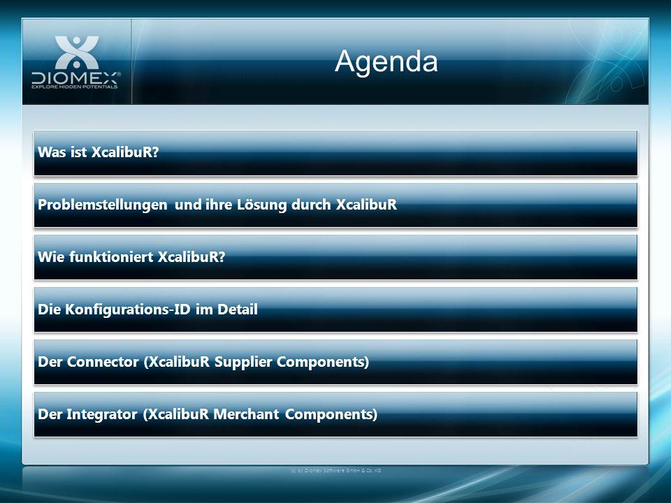XcalibuR Integrator V Konfigurierbare Artikel Nutzung des KonfiguratorsNutzung des Konfigurators Automatische Erkennung von XcalibuR-Lieferanten Automatische Erkennung von XcalibuR-Lieferanten Artikelauswahl Artikelauswahl Dynamische Optionen Dynamische Optionen (c) by Diomex Software GmbH & Co.