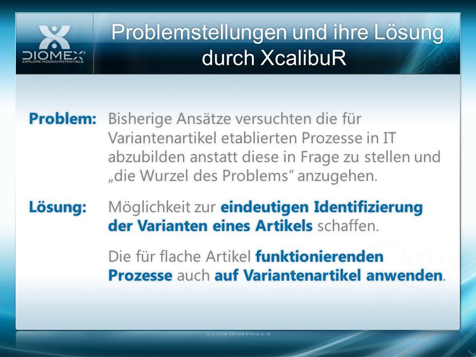 Problemstellungen und ihre Lösung durch XcalibuR (c) by Diomex Software GmbH & Co. KG Problem:Bisherige Ansätze versuchten die für Variantenartikel et
