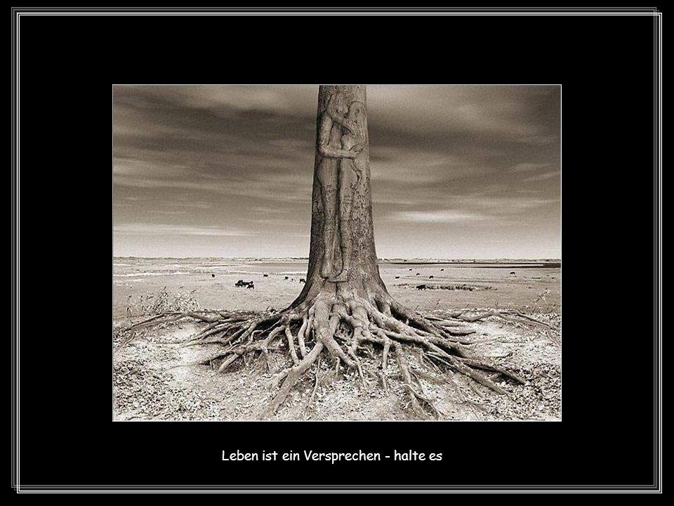 Leben ist eine Reise - mache sie bis zu Ende