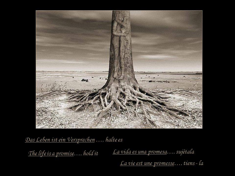 Das Leben ist eine Reise ….. mache sie bis zu Ende La vie est un voyage..... vas jusqu´au boutThe life is a journey…. makes it up to end La vida es un