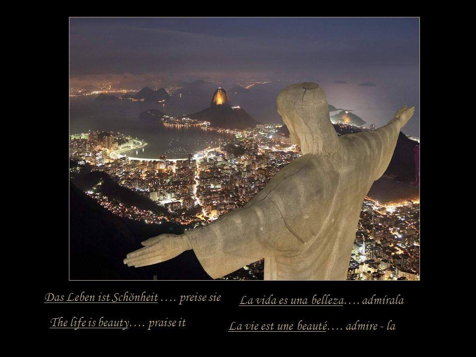 Das Leben ist ein Versprechen …. halte es The life is a promise…. hold it La vie est une promesse…. tiens - la La vida es una promesa…. sujétala
