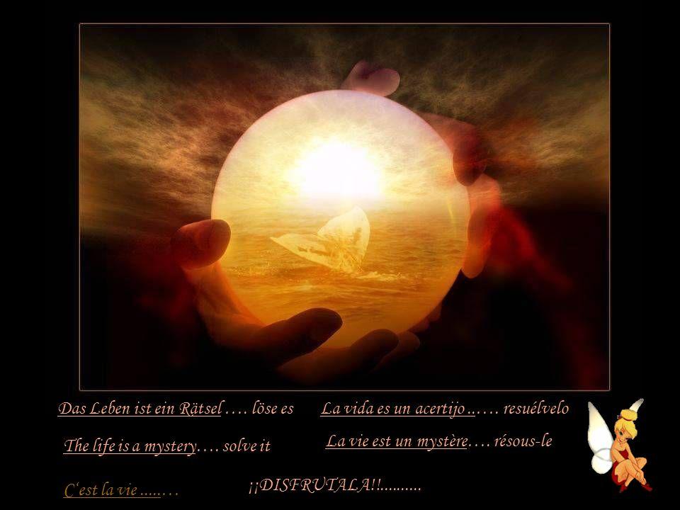 Das Leben ist ein Ziel …. erreiche es The life is a goal…. reach it La vie est un objectif…. atteints - le La vida es un destino.…. alcánzalo