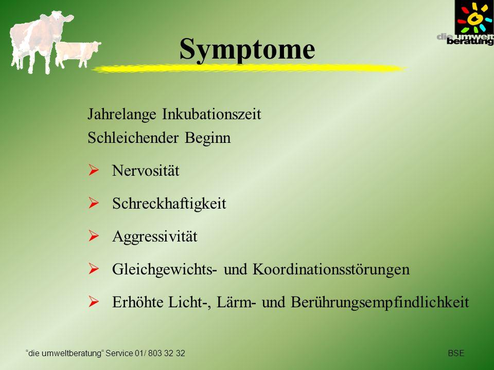 BSEdie umweltberatung Service 01/ 803 32 32 Symptome Jahrelange Inkubationszeit Schleichender Beginn Nervosität Schreckhaftigkeit Aggressivität Gleich