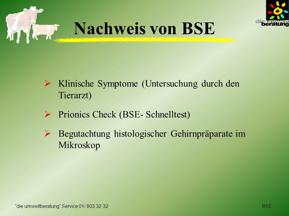 BSEdie umweltberatung Service 01/ 803 32 32 Nachweis von BSE Klinische Symptome (Untersuchung durch den Tierarzt) Prionics Check (BSE- Schnelltest) Be