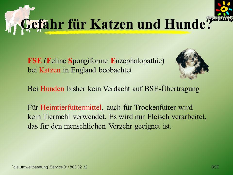 BSEdie umweltberatung Service 01/ 803 32 32 Sicherheit von Lebensmitteln Geringes Risiko bei österreichischem Rindfleisch Höchste Sicherheit bei Fleisch aus kontrolliert-biologischer Landwirtschaft Gelatine wird in Deutschland und in Österreich zu 90% aus Schweineknochen hergestellt Nach derzeitigem Wissensstand können Milch- und Milchprodukte bedenkenlos verzehrt werden Braten, Kochen, Dünsten, Backen, Tiefkühlen tötet Prionen nicht ab!