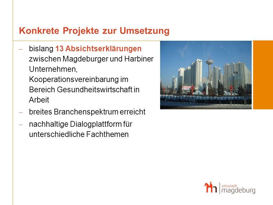 Konkrete Projekte zur Umsetzung bislang 13 Absichtserklärungen zwischen Magdeburger und Harbiner Unternehmen, Kooperationsvereinbarung im Bereich Gesu