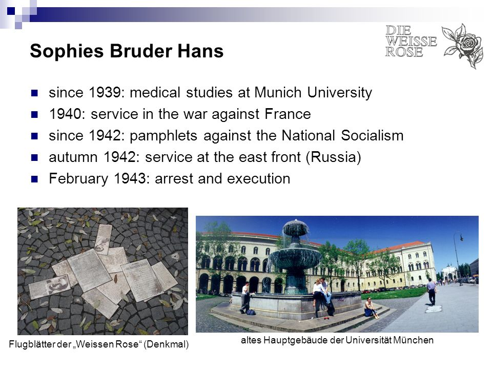 Sophies Bruder Hans since 1939: medical studies at Munich University 1940: service in the war against France since 1942: pamphlets against the Nationa