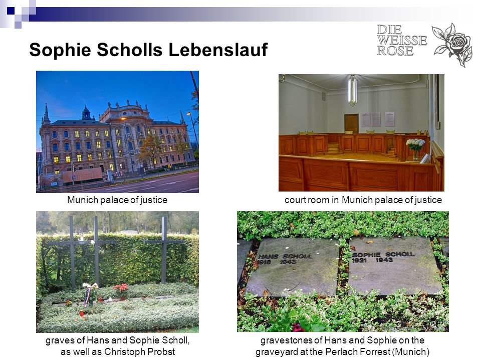 Sophie Scholls Lebenslauf court room in Munich palace of justiceMunich palace of justice graves of Hans and Sophie Scholl, as well as Christoph Probst