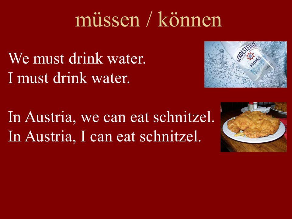 müssen / können We must drink a lot of water.I must drink a lot of water.