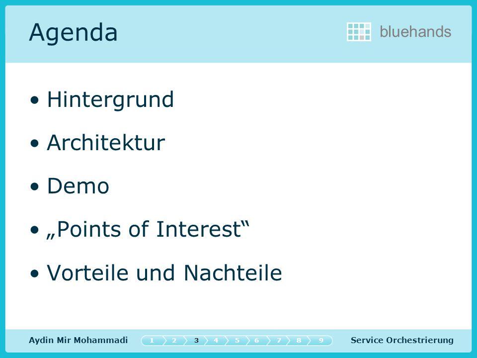 Service Orchestrierung bluehands Agenda Hintergrund Architektur Demo Points of Interest Vorteile und Nachteile Aydin Mir Mohammadi 547632189
