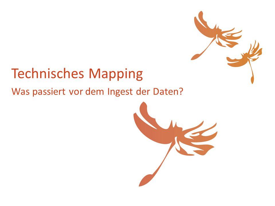 Technisches Mapping Was passiert vor dem Ingest der Daten?
