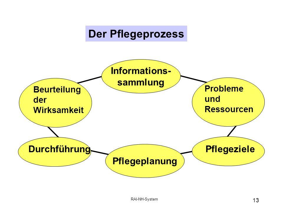 RAI-NH-System 13 Der Pflegeprozess DurchführungPflegeziele Pflegeplanung Beurteilung der Wirksamkeit Informations- sammlung Probleme und Ressourcen